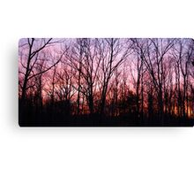 Fire and Earth Canvas Print