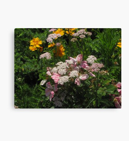 """""""Pink, White, Yellow Flowers"""" Canvas Print"""