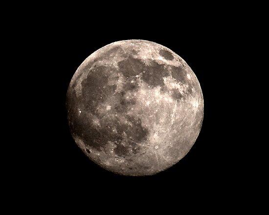 Full Moon Rising by Jane Brack