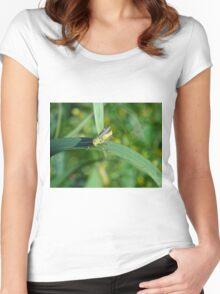 Little hopper Women's Fitted Scoop T-Shirt