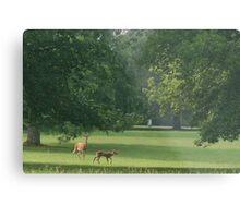 My dear deer 2 Metal Print