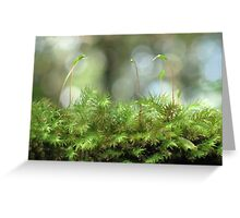 Moss Capsules Greeting Card
