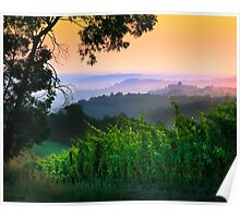 San Gimignano Hills #1 Poster