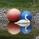 Swan and red and blue ball reflections by jeanlphotos