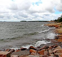 Which Way Does The Wind Blow by Debbie Oppermann