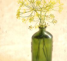 Dill in a Bottle by Linda Trine