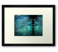 Born A Dragonfly Framed Print