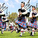 Scottish Highland Pipe & Drum Band  by Carole-Anne