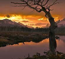 Sunset - Tierra del Fuego National Park, Argentina by Christine Zambory