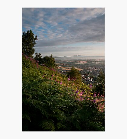 Dawn in Worcestershire Photographic Print