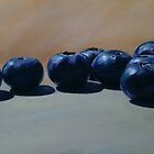 Blueberry Hill by Trevor Osborne