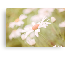 A Gentle Sway Canvas Print