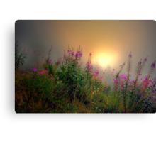 Cascades Fog and Fireweed Canvas Print