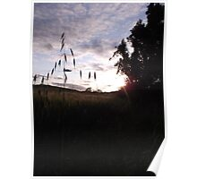 Sunset over cross-shaped grass Poster