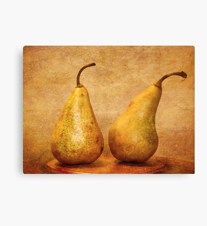 A right old pair! Canvas Print
