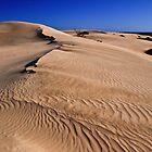Desert Photographer by Stephen Ruane