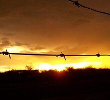 Golden sunset by Pandaki