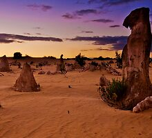 Nambung National Park Pinnacles Sunrise 4 by Jaxybelle