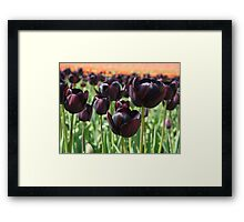 Tulip Festival art print Deep Purple Tulips Meadow Baslee Framed Print