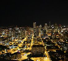Seattle from the Space Needle by CherylBee