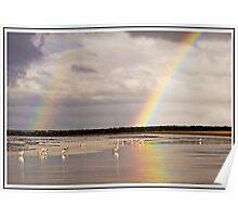 Chasing rainbows Poster