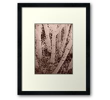 Brown in The Mouth Framed Print