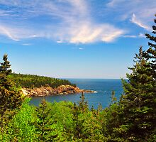 Coastline, Acadia National Park, Mt. Desert Island, Maine by fauselr