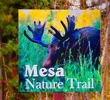 Mesa Nature Trail by IMAGETAKERS