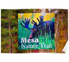 Mesa Nature Trail Poster