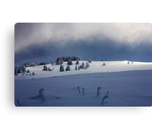 contrast of the winter day Canvas Print