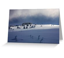 contrast of the winter day Greeting Card