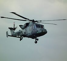 Agusta Westland Wildcat by mike  jordan.