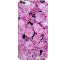 Pink chrysanthemum flowers iPhone Case/Skin