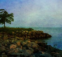 Blue Morning on Lake Erie by fotogirl85