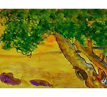 The Climbing  Tree, watercolor Photographic Print