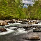 Flowing River by fotogirl85