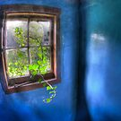 Room Azure by geoff curtis