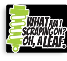 What am I scraping on? 2 Canvas Print