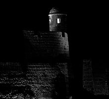 Qal'at al-Bahrain by Drew Hillegass