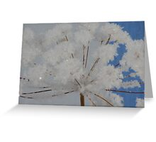 Pickled Snow Greeting Card