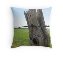 Post & Wire  Throw Pillow