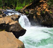 McCloud River Falls, Lower Cascade by Bob Moore