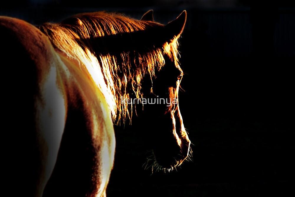 Golden darkness by Penny Kittel