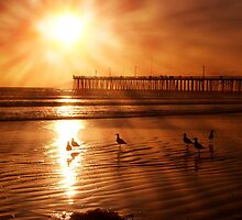 Pismo Beach with post photoshop adjustment by the57man