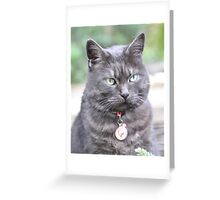 Silky Greeting Card