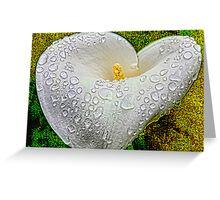 My Heart's Tears Greeting Card