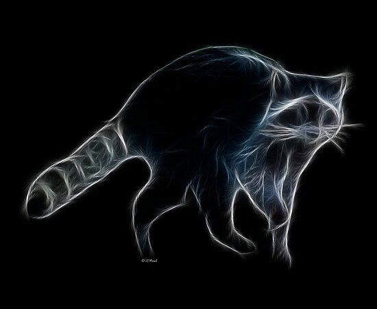 Medicine Wheel Totem Animals by Liane Pinel- Raccoon by Liane Pinel