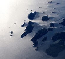 Islands in the Stream  by Nirmal  Ghosh