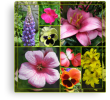 Lupin, Lilies, Geraniums and Pansies Collage Canvas Print