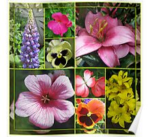 Lupin, Lilies, Geraniums and Pansies Collage Poster